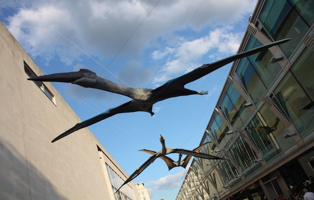 Pterodactyls outside the Royal Festival Hall in 2010.  Photo by Zefrog