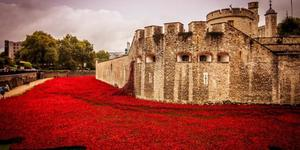 IWM And Tower Of London Up For Museum Of The Year Award