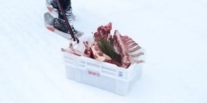 Eat Reindeer At Finnish Pop-Up Tënu This Christmas