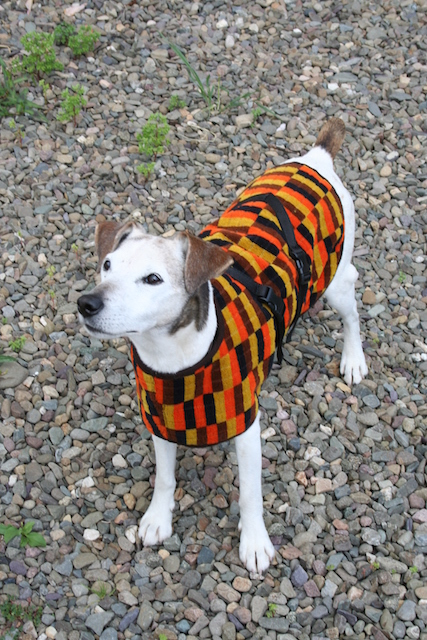 District line and Routmaster dog coats, from £44.95. This hand-made and waterproof dog coat is versatile and hard-wearing.