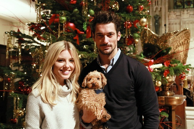 David Gandy and Mollie King from The Saturdays.  Plus pooch.