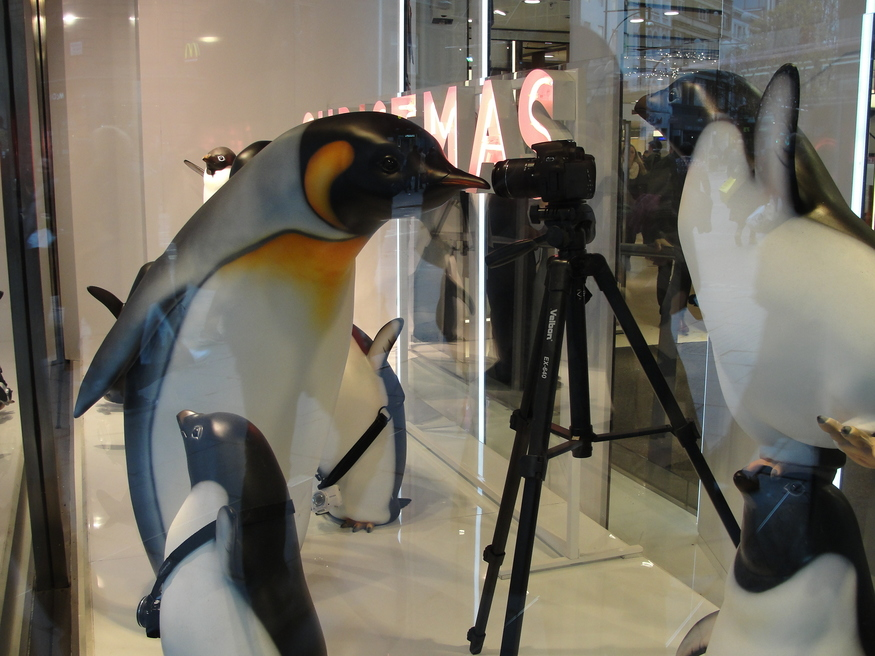 John Lewis goes all-out cute, with these penguins, inspired by the company's TV ad.