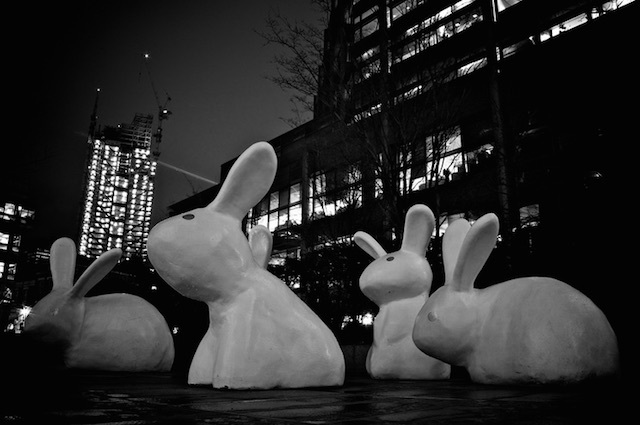Rabbits at Spitalfields Market and Broadgate in 2010. Photo: Simon Wicks