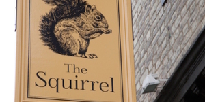 Where To Find Squirrels In London