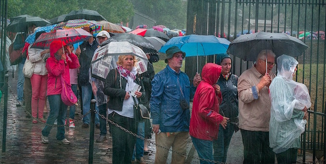 Hardy tourists determined to see the Tower of London in August 2014. Photo: DAVE