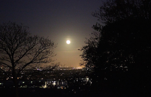 The view from Alexandra Palace. Photo: stephenmid