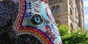 Friday Photos: Mosaics