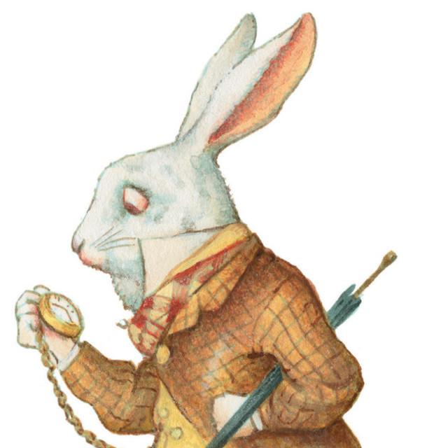 150218_alice_white_rabbit_web_0