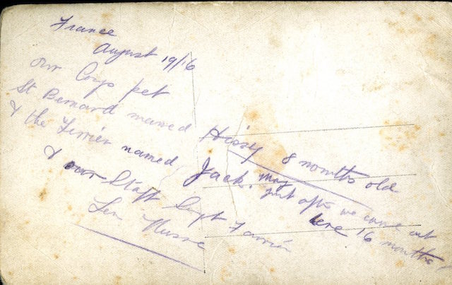 "Note on reverse of card: ""France, August 1916. Our Corps pet St Bernard named Hissy 8 months old & the Terrier named Jack. May - just after we came out here 16 months - & our Staff Sgt Farrier Len Nusse."""