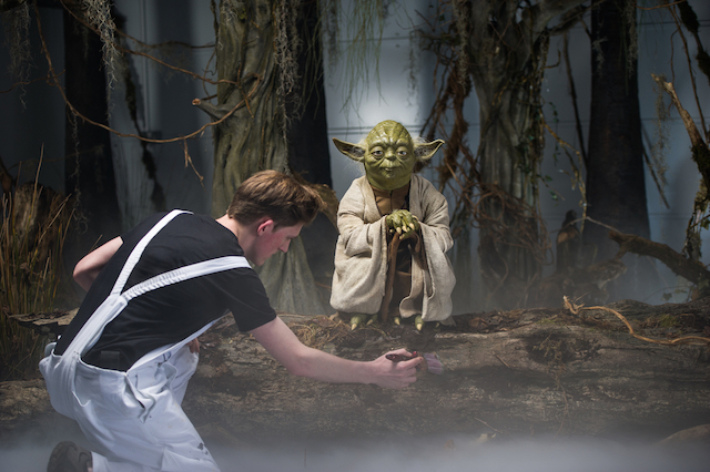 Yoda's swamp is one of a variety of scenarios visitors can visit, including the Millennium Falcon and the Mos Eisley Cantina