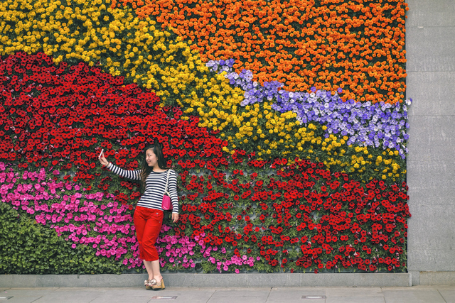 A woman takes a selfie in front of a brightly coloured living wall. Copyright David Thurston.