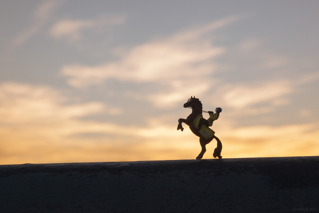 A rider rears in the sunset ...