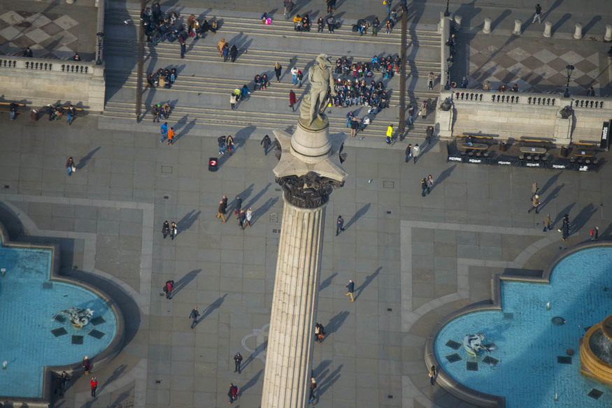 Trafalgar Square: a pigeon's-eye view.