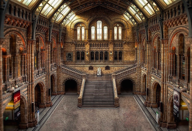Natural History Museum. Photo: Mike Murphy (2012)