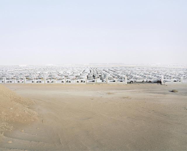 Syngenta Photography Award: Professional CommissionCaption: Car logistics facilityPhotographer: Richard Allenby-PrattEmail: richard@allenby-pratt.comAddress: Villa 21, Yeme'eh St, Um Suqeim 1, Dubai, Dubai, none, United Arab EmiratesLocation: Jebel Ali, UAETaken at: 2013-06-15Medium: epson ultra-smooth fine artSize: 100 x 80cmAdditional information: