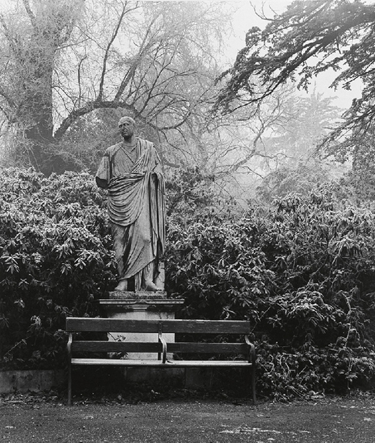 The grounds of Chiswick House Gardens in 1945. Photo: Bill Brandt.
