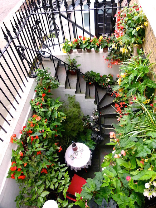 The Earls Court Basement Garden nominated by Dean Addams.