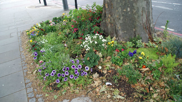 Kennington Cross in south London is a busy spot and the colourful tree pit created by John Kitching.