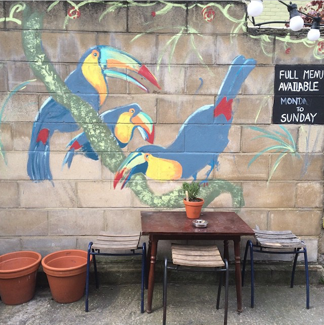 Toucans in Crouch End