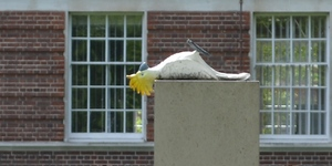 Why Is There A Statue Of A Dead Parrot In Greenwich?