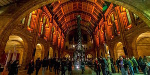 Free And Cheap London Events: 25-31 May 2015
