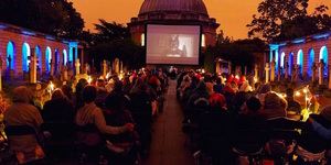 Watch Films In A Brewery And A Cemetery This Summer