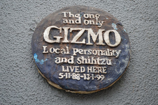 The Golden Heart pub in Spitalfields has a number of peculiar decorations on its Commercial Street frontage. Among them is this plaque to a former pub dog called Gizmo. Perhaps they fed him after midnight.