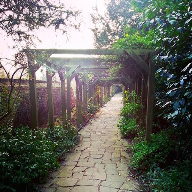 The Rookery on Streatham Common. Photo: Venesha Thompson (2015)