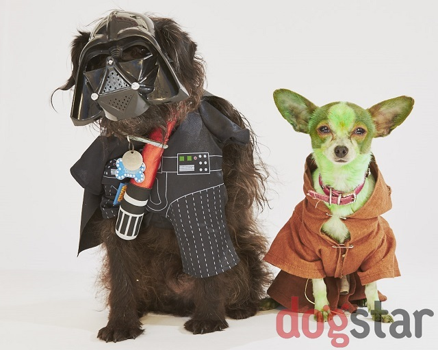 Bark Vadar and Yodog.