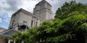 London's Little Gardens: SOAS Japanese Roof Garden