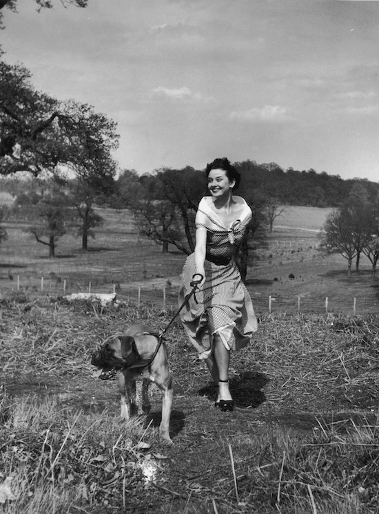 Actress Audrey Hepburn (1929-1993) exercising her dog in Richmond Park after a strenuous season in the London revue 'Sauce Piquante', 13 May 1950. Picture Post -- 5035 -- We Take A Girl To Look For Spring -- pub. 1950 (Photo by Bert Hardy/Hulton Archive/Getty Images)