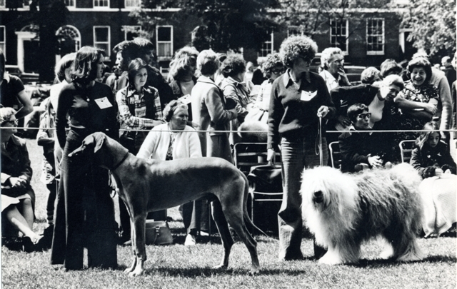LB Islington, Pets' Day Dog Show at Highbury Fields, 1976 (Islington Local History Centre)