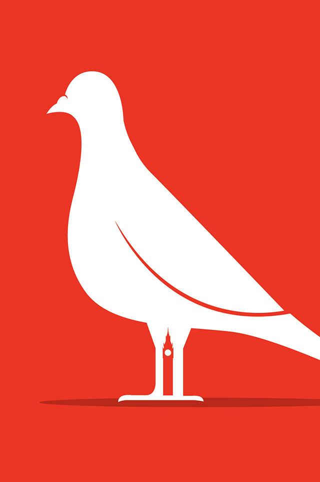 James Benn, Pigeon