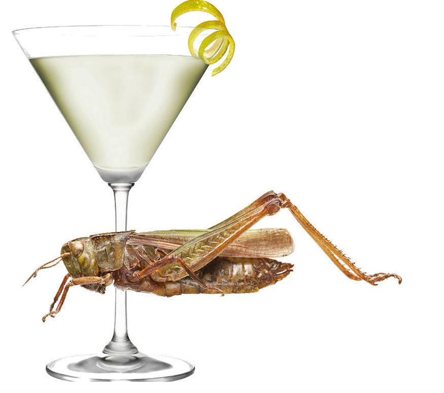 Martini with a grasshopper