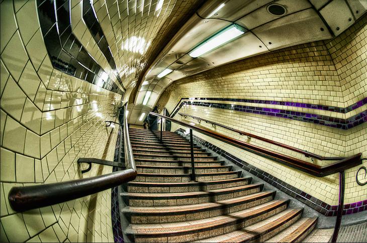 Snake tiles Euston underground. Photo: Sean Batten (2012)