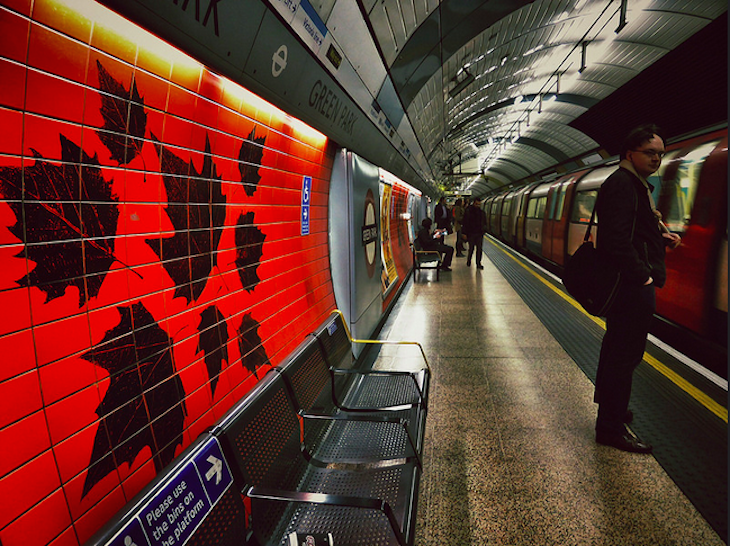 Leaves at Green Park Station. Photo: Doug (2014)