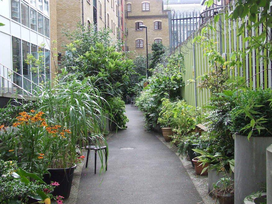 londons little gardens gibbons rent londonist - Little Garden