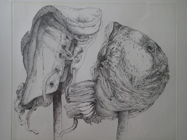 Flounder, Gunter Grass