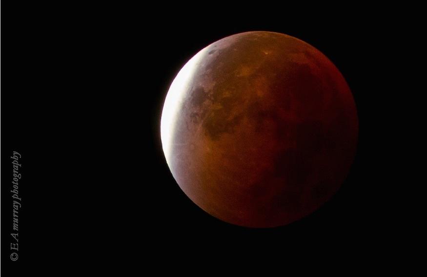moon4.jpg
