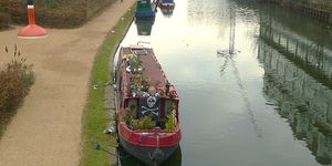 Regent's Canal Fish To Be Shocked With Electric... In Order To Save Them