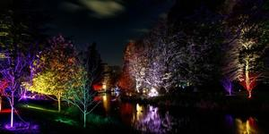 Gorgeous Wintery Photos From Syon House Enchanted Woodland