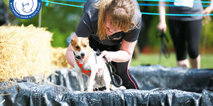 It's Dogs Vs. Humans At Battersea Mud Run