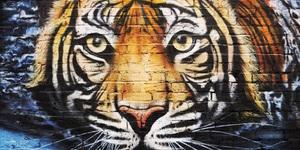 Who's Behind London's Street Art?