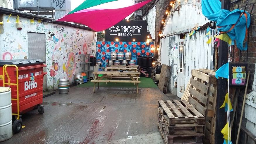 canopy4.jpg