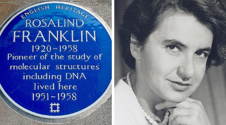 rosalind franklin medical school secondary essays Why was i rejected from medical school march 26th  rosalind franklin university of she told me that my essay did not convey this well and that i spent too.
