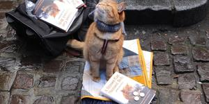 See Streetcat Bob In An Evening For Charity