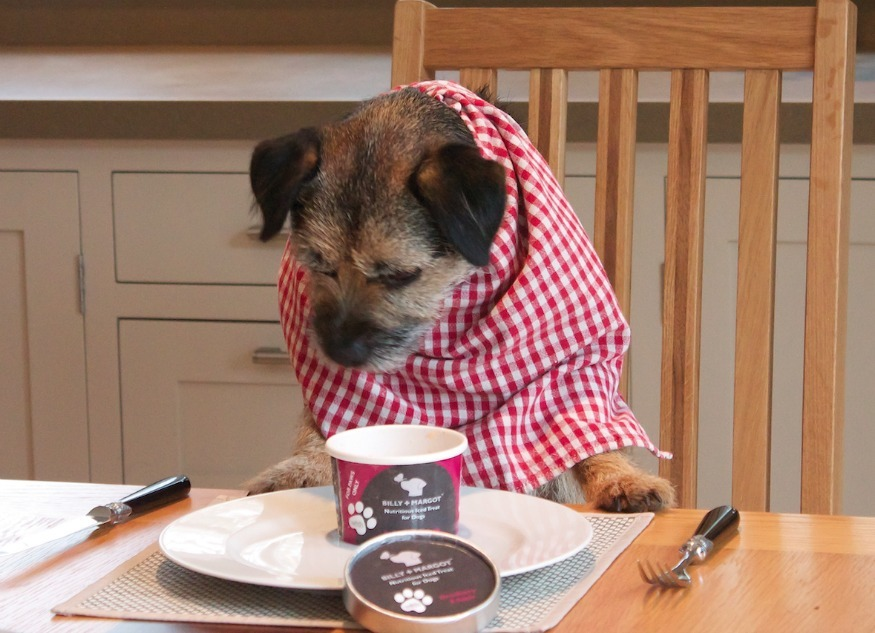 London Is Getting A New Fine Dining Restaurant… For Dogs