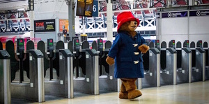 Doesn't Paddington Look Lovely In These Photos?