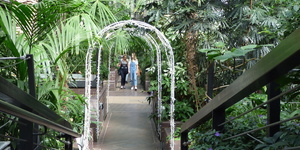 The City Of London's Tropical Conservatory