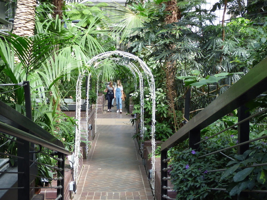 Inside London's Second Biggest Conservatory